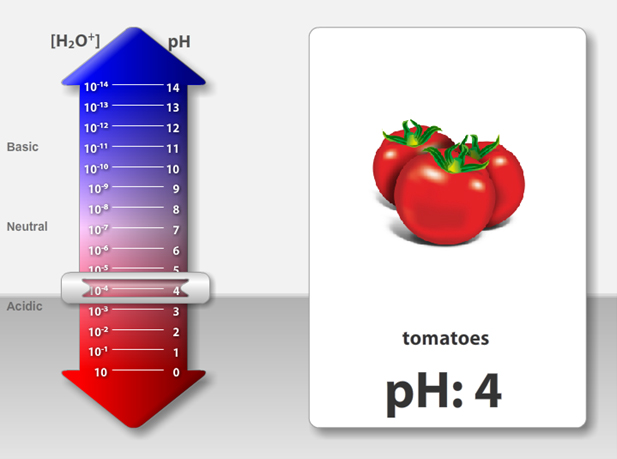 Interactive pH Slider